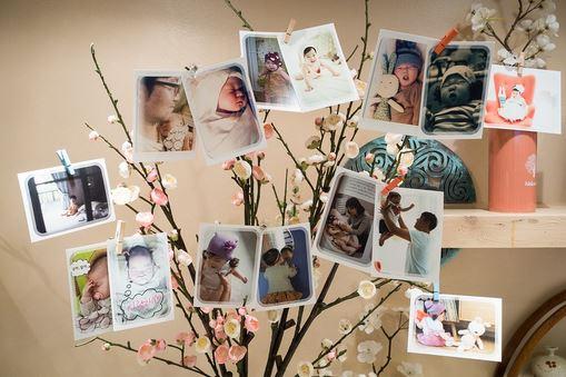 arbre_photos_mariage.JPG